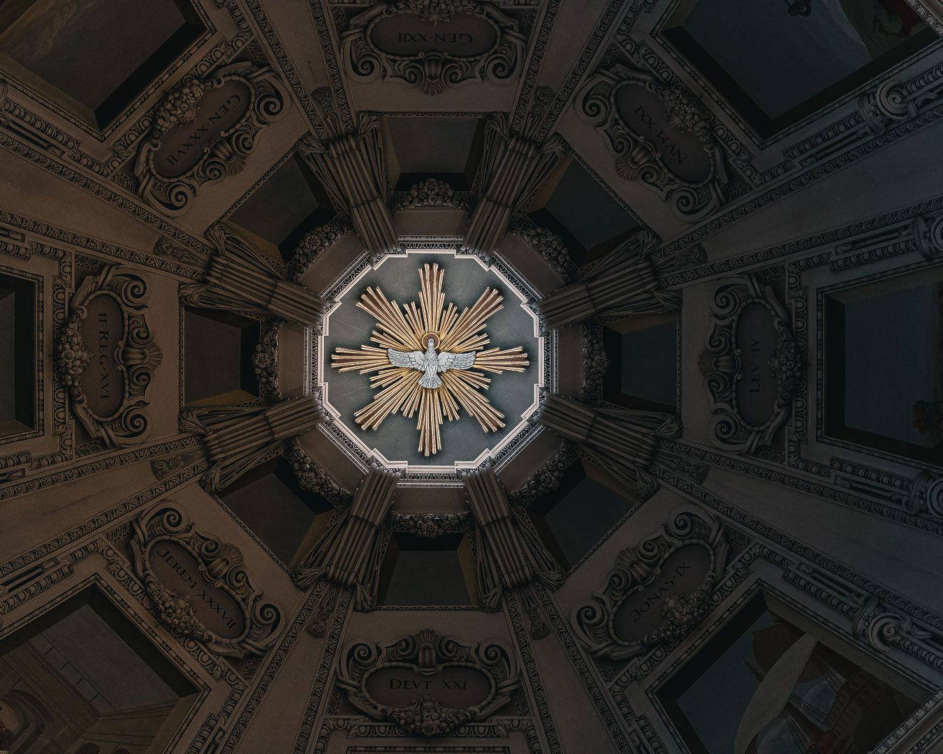 Dove in the dome of the Salzburg Cathedral