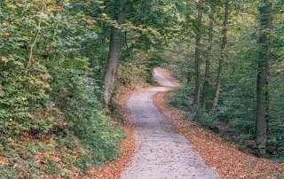 Wanderweg am Kapuzinerberg