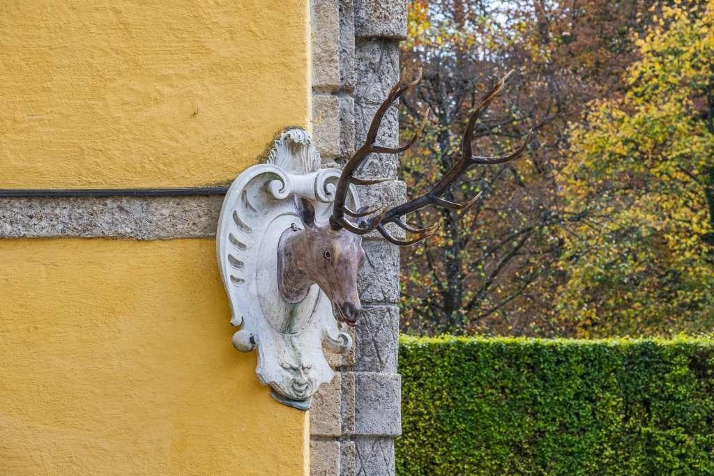 Deer at the Hellbrunn Palace