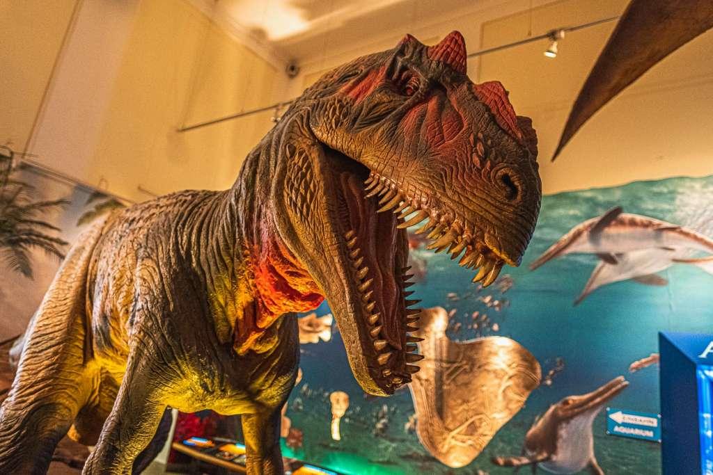 Haus der Natur Dinosaur