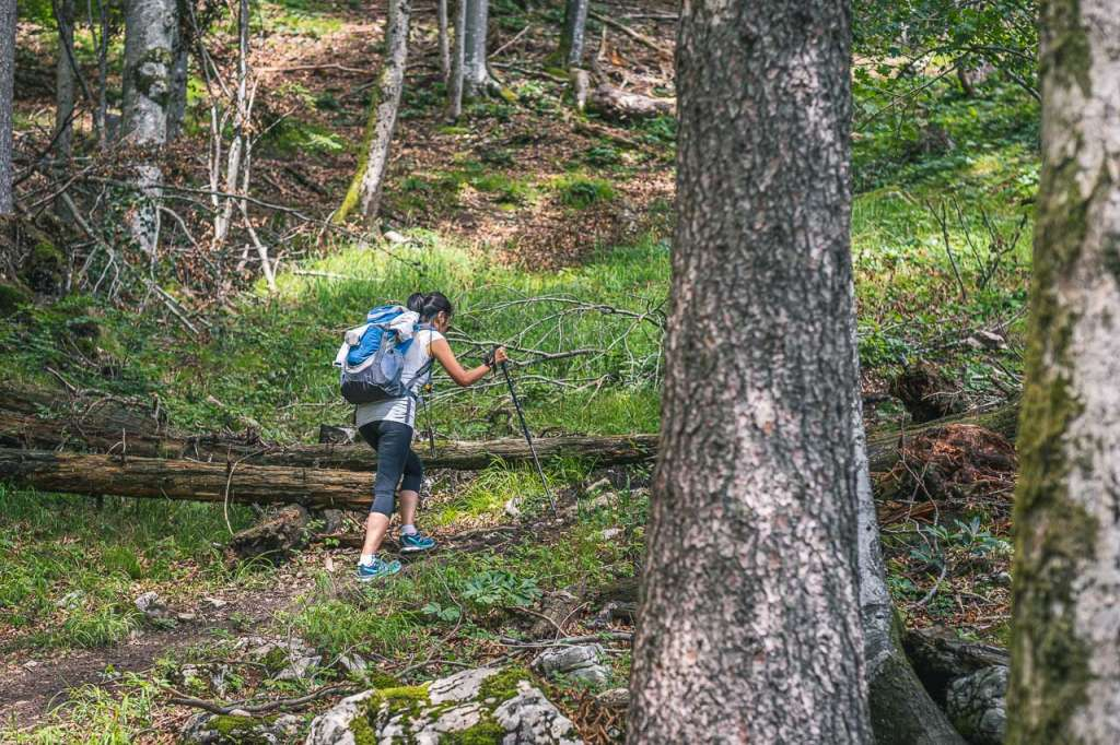 Gaisberg Hiking is one of the Best things to Do in Salzburg since Salzburg is surrounded by Mountains